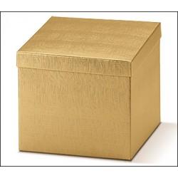 Caja F/C Seta Oro